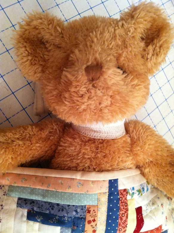 Bear5