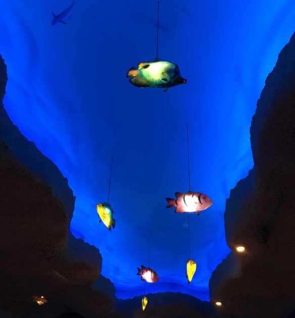 hang-fish